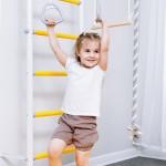 Детский спортивный комплекс Romana S1