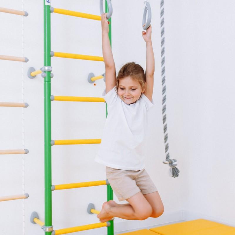 Детский спортивный комплекс Romana Karusel S6