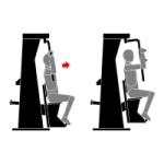 Тренажер «Сведение рук»